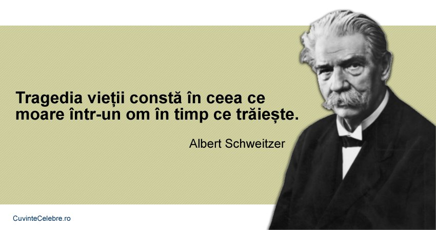 Citat Albert Schweitzer