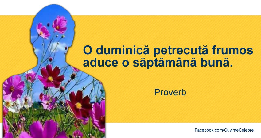 Proverb universal