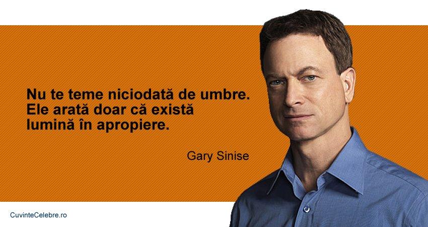 Citat Gary Sinise