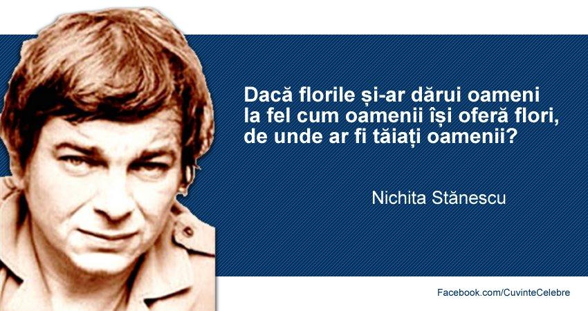 Citat Nichita Stanescu
