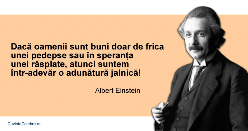 Citate Albert Einstein