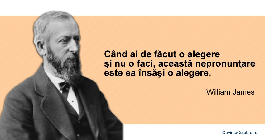 Citate William James