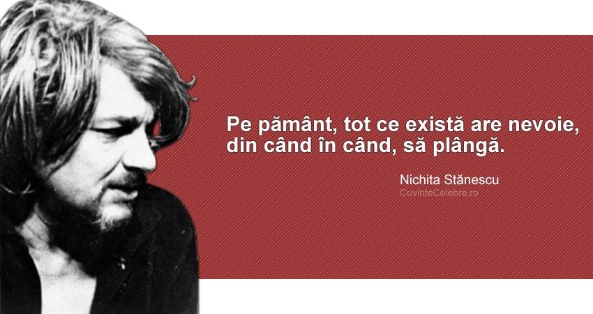 citate nichita stanescu Uneori, toată natura plânge, citat de Nichita Stănescu citate nichita stanescu