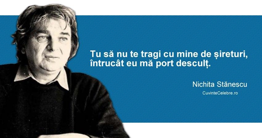 Citat Nichita Stănescu