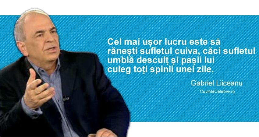 Citat Gabriel Liiceanu