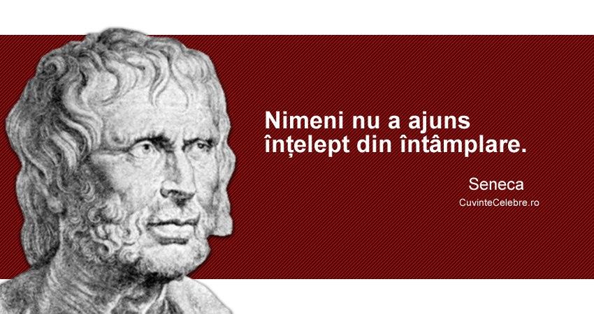 Citaten Seneca : Trebuie să vrei ca fii înțelept citat de seneca