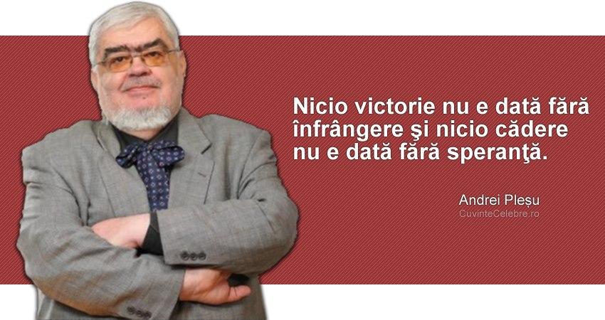 Citat Andrei Plesu