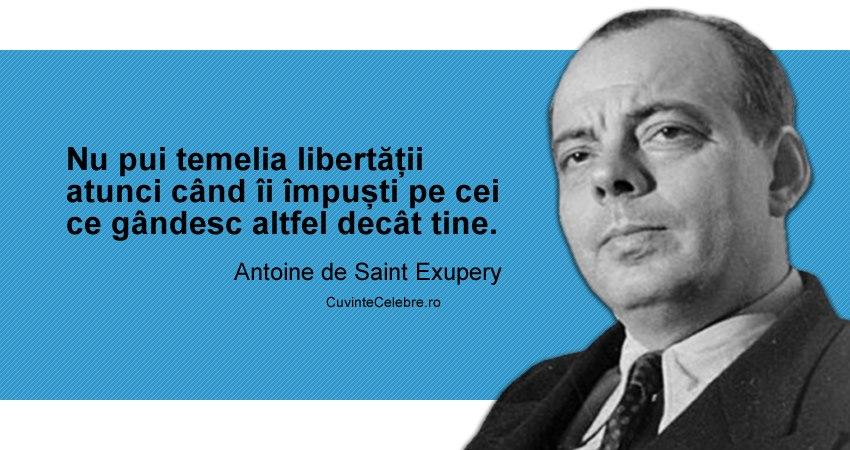 Citat Antoine de Saint Exupery