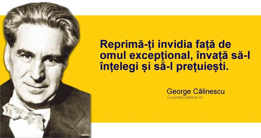 Citat George Calinescu