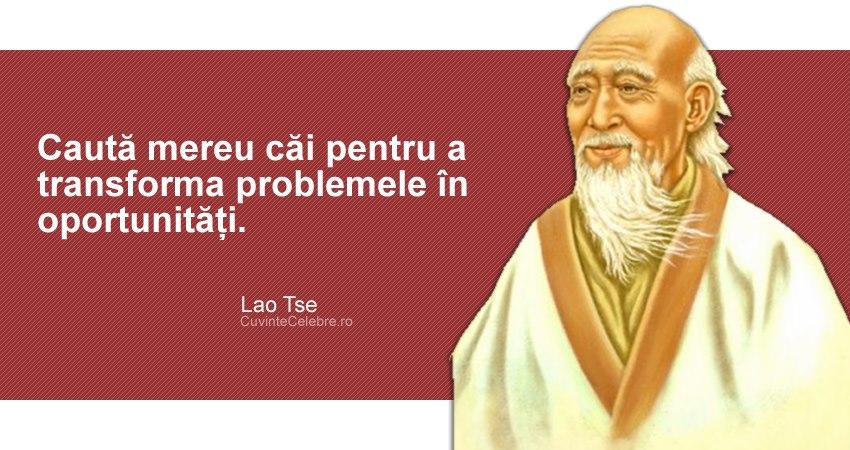 """""""Caută mereu căi pentru a transforma problemele în oportunități."""" Lao Tse"""