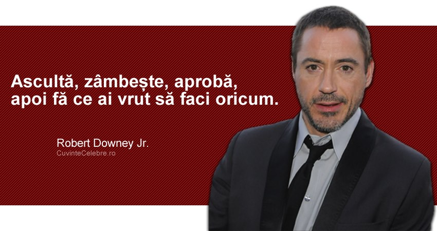Citat Robert Downey Jr.