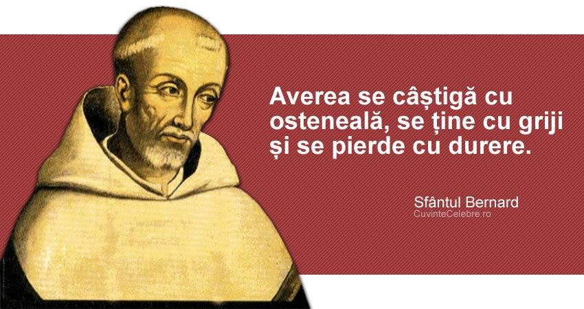 """""""Averea se câștigă cu osteneală, se ține cu griji și se pierde cu durere."""" Sf. Bernard de Clairvaux"""