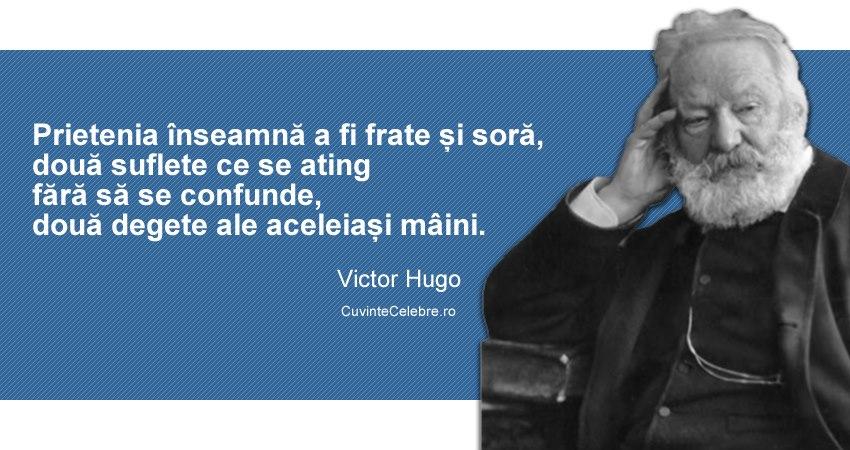 citate celebre despre prietenie in franceza Citate Victor Hugo citate celebre despre prietenie in franceza