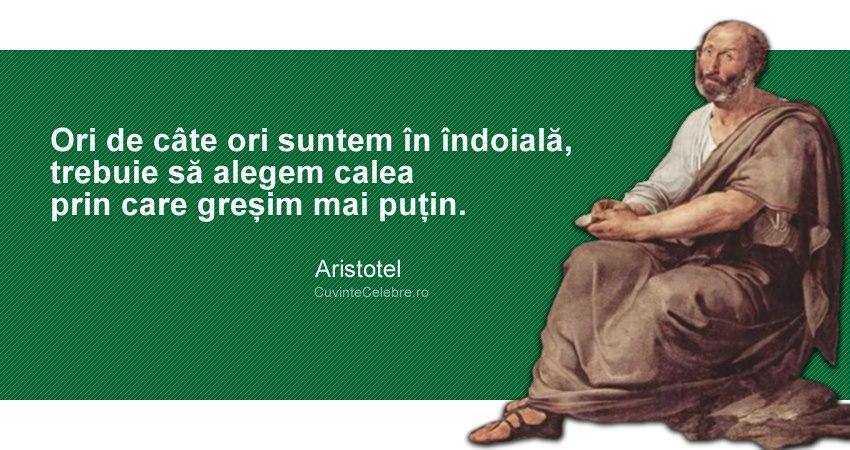 """""""Ori de câte ori suntem în îndoială, trebuie să alegem calea prin care greșim mai puțin."""" Aristotel"""