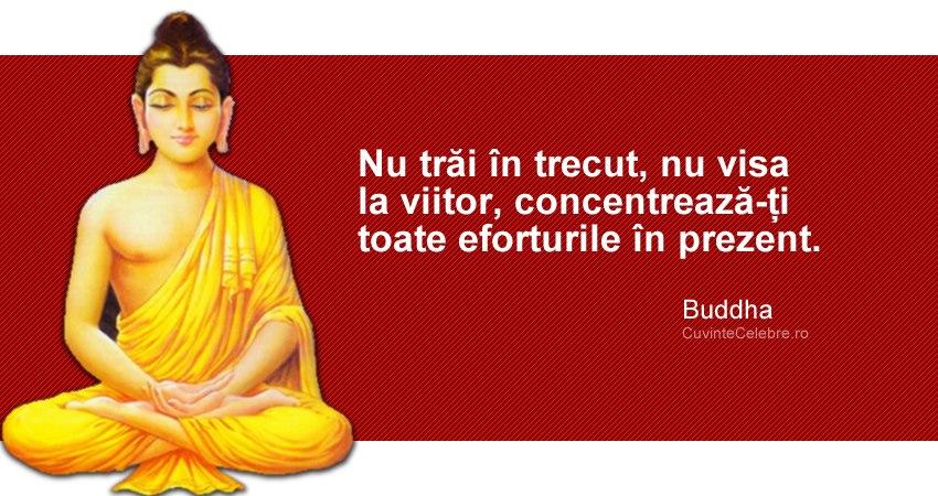 """""""Nu trăi în trecut, nu visa la viitor, concentrează-ți toate eforturile în prezent"""". Buddha"""