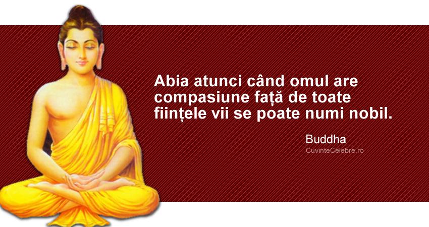 """""""Abia atunci când omul are compasiune față de toate ființele vii se poate numi nobil."""" Buddha"""