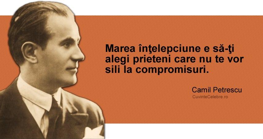 """""""Marea înţelepciune e să-ţi alegi prieteni care nu te vor sili la compromisuri."""" Camil Petrescu"""