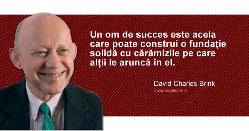 Citat David Charles Brink