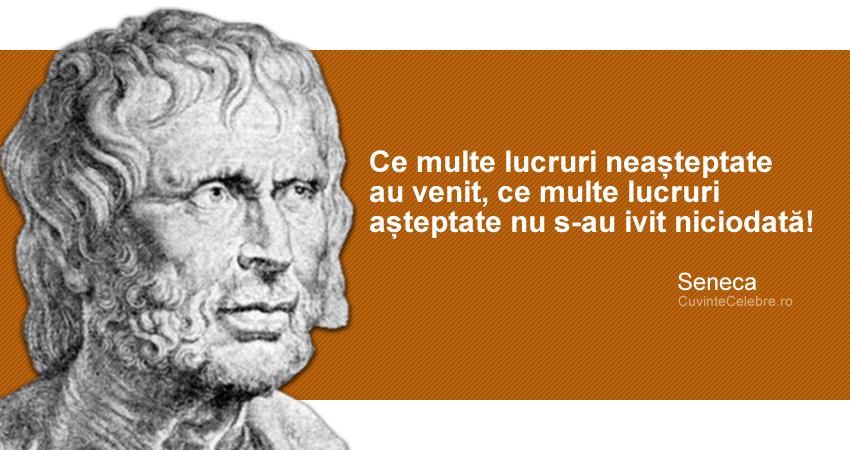 """""""Ce multe lucruri neașteptate au venit, ce multe lucruri așteptate nu s-au ivit niciodată!"""" Seneca"""