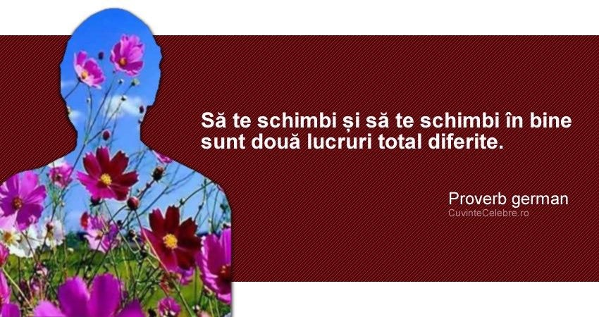 """""""Să te schimbi și să te schimbi în bine sunt două lucruri total diferite."""" Proverb german"""