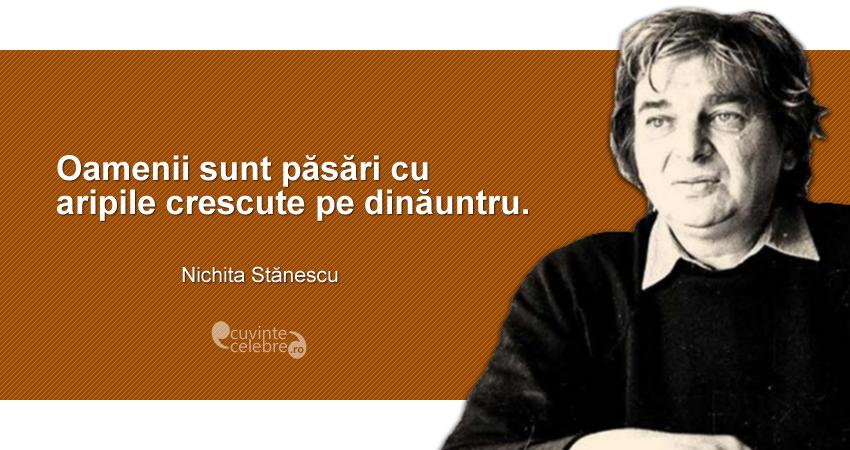 """""""Oamenii sunt păsări cu aripile crescute pe dinăuntru."""" Nichita Stănescu"""