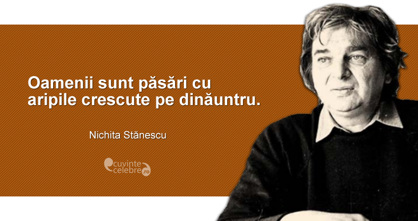 citate nichita stanescu Oameni și păsări, citat de Nichita Stănescu citate nichita stanescu