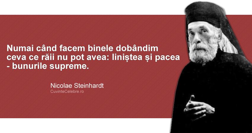 """""""Numai când facem binele dobândim ceva ce răii nu pot avea: liniștea și pacea - bunurile supreme."""" Nicolae Steinhardt"""