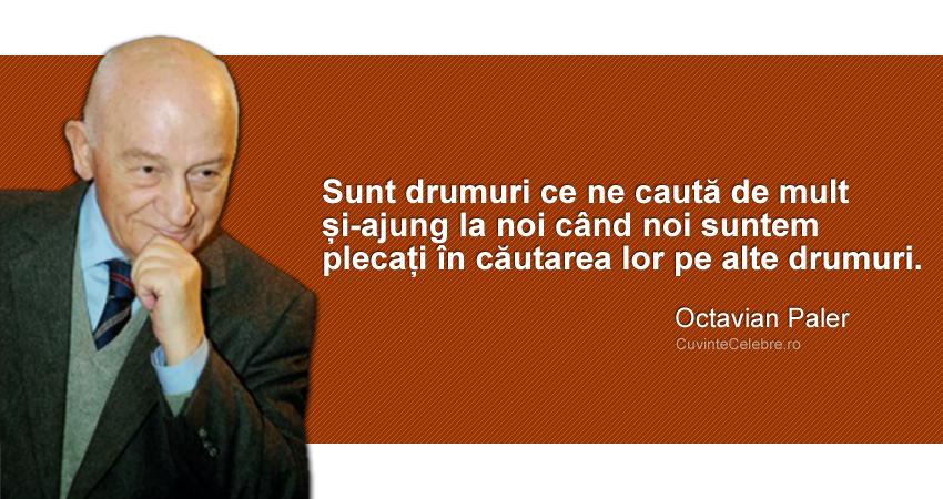"""""""Sunt drumuri ce ne caută de mult și-ajung la noi când noi suntem plecați în căutarea lor pe alte drumuri."""" Octavian Paler"""