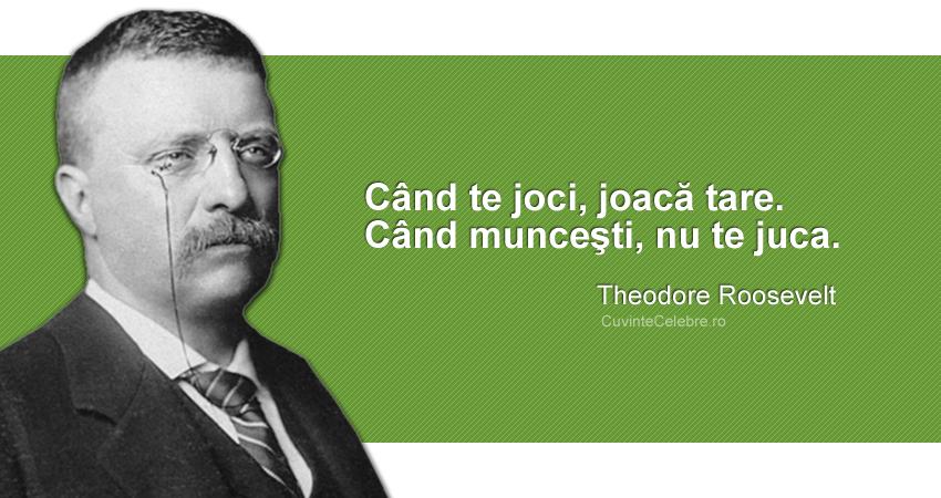 """""""Când te joci, joacă tare. Când munceşti, nu te juca."""" Theodore Roosevelt"""