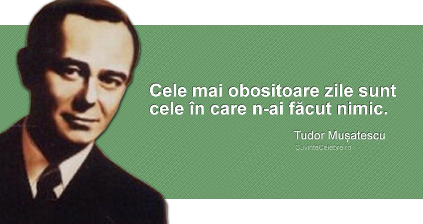 """""""Cele mai obositoare zile sunt cele în care n-ai făcut nimic."""" Tudor Mușatescu"""