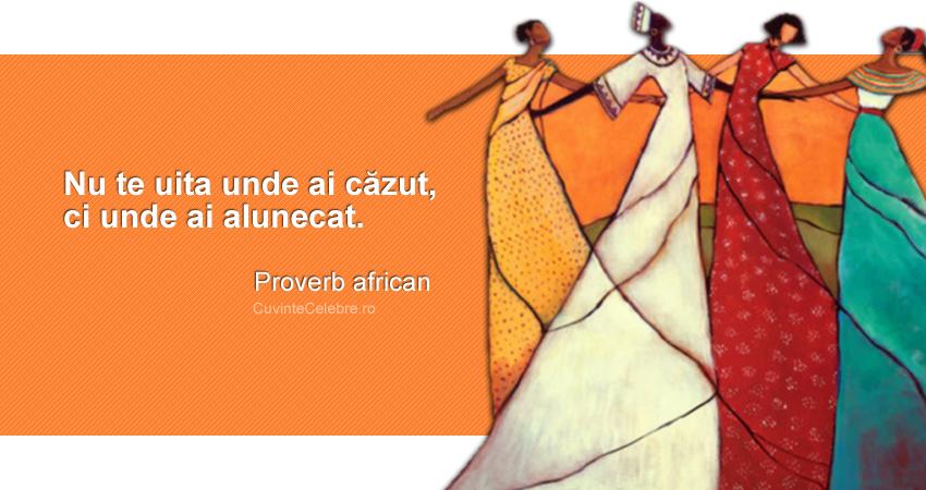 """Nu te uita unde ai căzut, ci unde ai alunecat."" Proverb african"