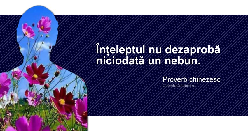 """""""Înțeleptul nu dezaprobă niciodată un nebun."""" Proverb chinezesc"""