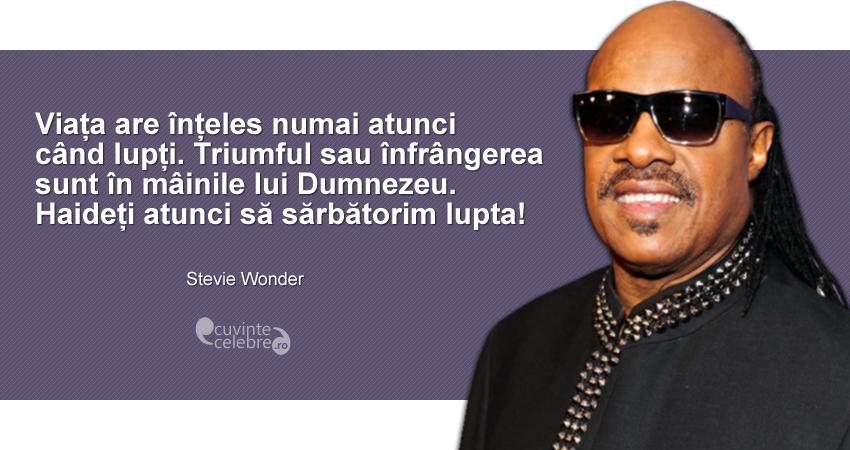 """""""Viața are înțeles numai atunci când lupți. Triumful sau înfrângerea sunt în mâinile lui Dumnezeu. Haideți atunci să sărbătorim lupta!"""" Stevie Wonder"""