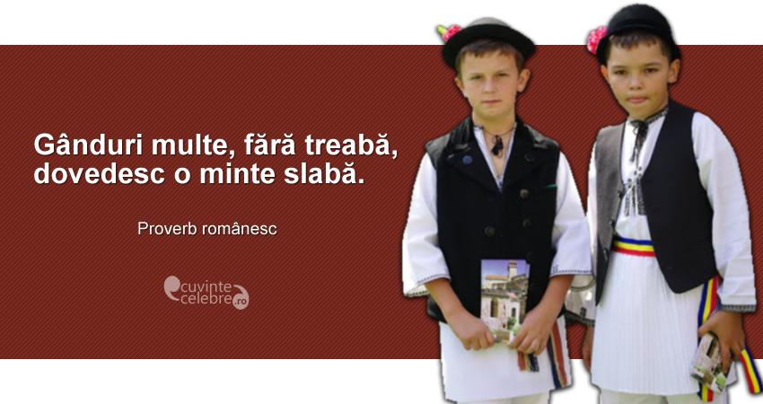 """""""Gânduri multe, fără treabă, dovedesc o minte slabă."""" Proverb românesc"""