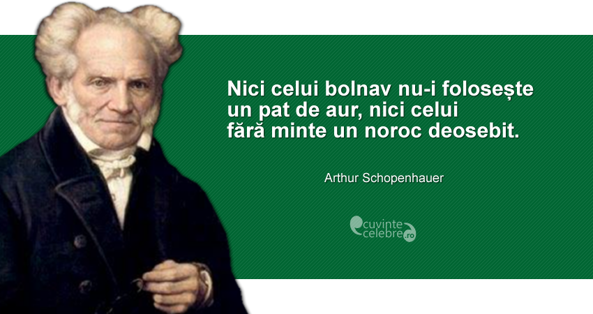 """""""Nici celui bolnav nu-i folosește un pat de aur, nici celui fără minte un noroc deosebit."""" Arthur Schopenhauer"""