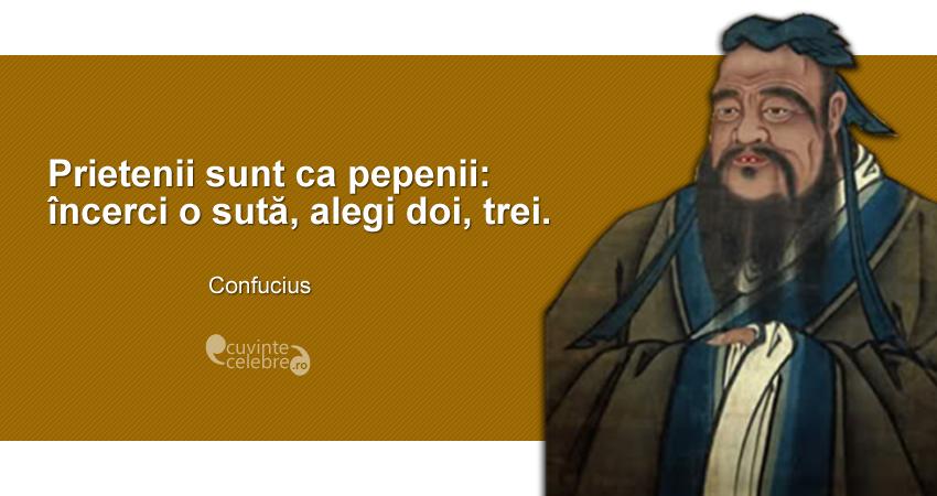 """""""Prietenii sunt ca pepenii: încerci o sută, alegi doi, trei."""" Confucius"""
