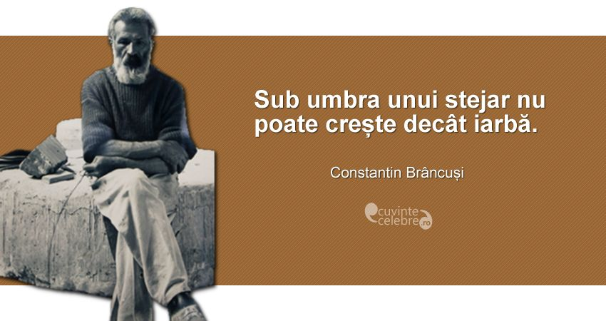 """Sub umbra unui stejar nu poate crește decât iarbă."" Constantin Brâncuși"