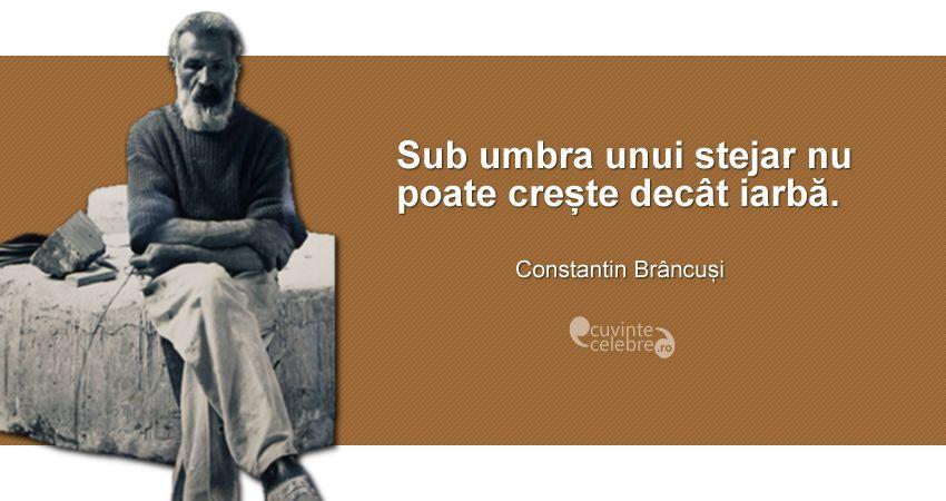 """""""Sub umbra unui stejar nu poate crește decât iarbă."""" Constantin Brâncuși"""