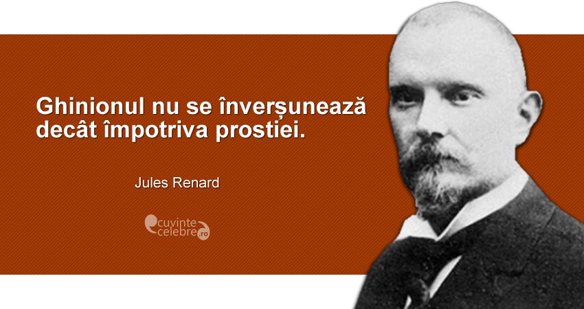 """""""Ghinionul nu se înverșunează decât împotriva prostiei."""" Jules Renard"""