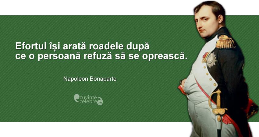 """""""Efortul își arată roadele după ce o persoană refuză să se oprească."""" Napoleon Bonaparte"""