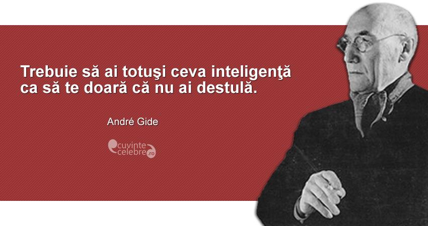 """""""Trebuie să ai totuşi ceva inteligenţă ca să te doară că nu ai destulă."""" André Gide"""