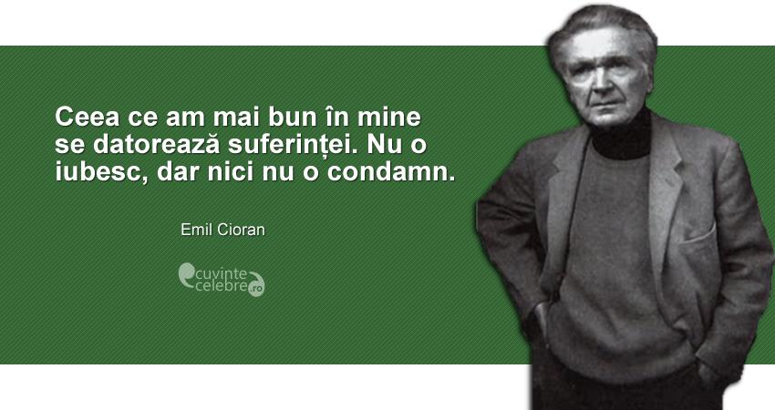 """""""Ceea ce am mai bun în mine se datorează suferinței. Nu o iubesc, dar nici nu o condamn."""" Emil Cioran"""