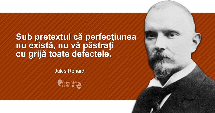 """""""Sub pretextul că perfecţiunea nu există, nu vă păstraţi cu grijă toate defectele."""" Jules Renard"""