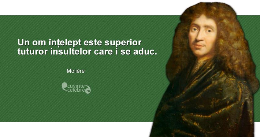 """""""Un om înțelept este superior tuturor insultelor care i se aduc."""" Molière"""