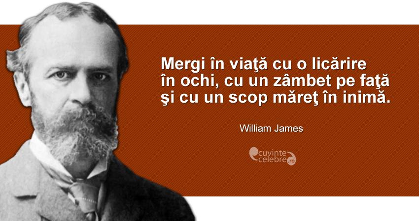 citate celebre despre reusita in viata Citate celebre despre optimism citate celebre despre reusita in viata