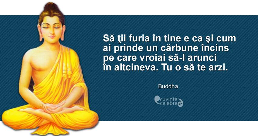 """""""Să ţii furia în tine e ca şi cum ai prinde un cărbune încins pe care vroiai să-l arunci în altcineva. Tu o să te arzi."""" Buddha"""
