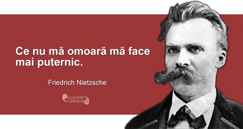 """""""Ce nu mă omoară mă face mai puternic."""" Friedrich Nietzsche"""