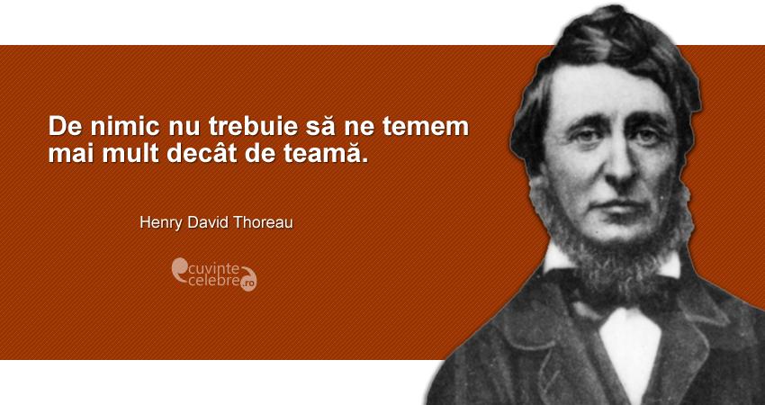"""""""De nimic nu trebuie să ne temem mai mult decât de teamă."""" Henry David Thoreau"""