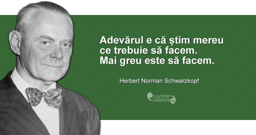 """""""Adevărul e că știm mereu ce trebuie să facem. Mai greu este să facem."""" Herbert Norman Schwarzkopf"""