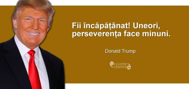 """""""Fii încăpățânat! Uneori, perseverența face minuni."""" Donald Trump"""